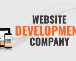 All About Website Development Company in India